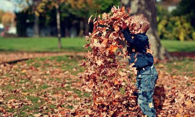 Fall Guide – Great Ideas For A Fun Fall With Kids