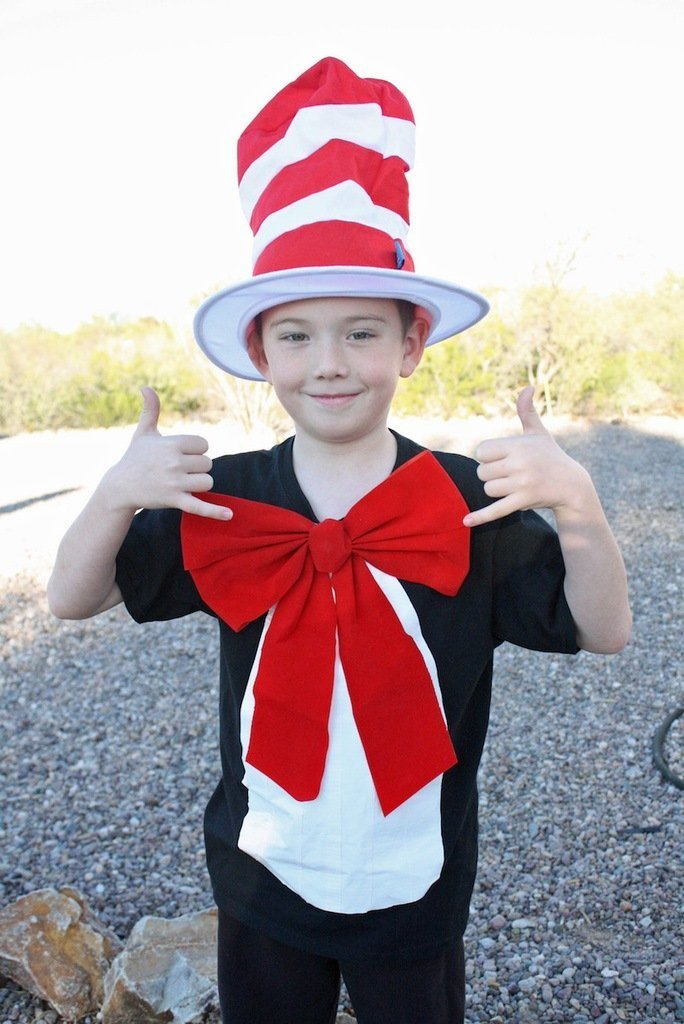 DIY Halloween Costumes for Kids - Cat in the hat